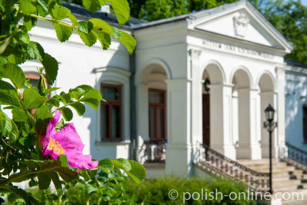Gutshaus in Czarnolas mit einer Blüte im Vordergrund