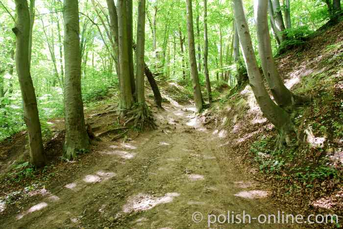Naturpark Hochredlauer Kämpe
