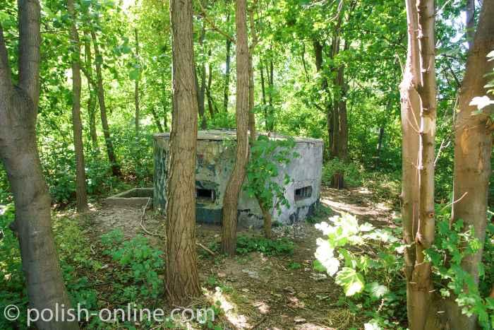 Alter Bunker Gdingen (Gdynia)
