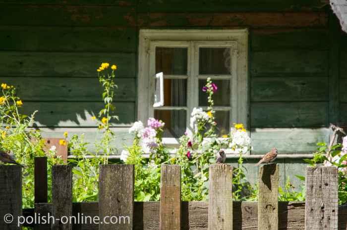 Spatzen auf einem Zaun