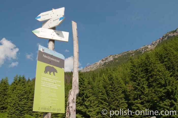 Warnschild Vorischt Bären in der Hohen Tatra