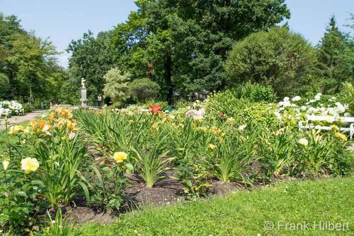 Blumenteppich im Kurpark von Bad Polzin