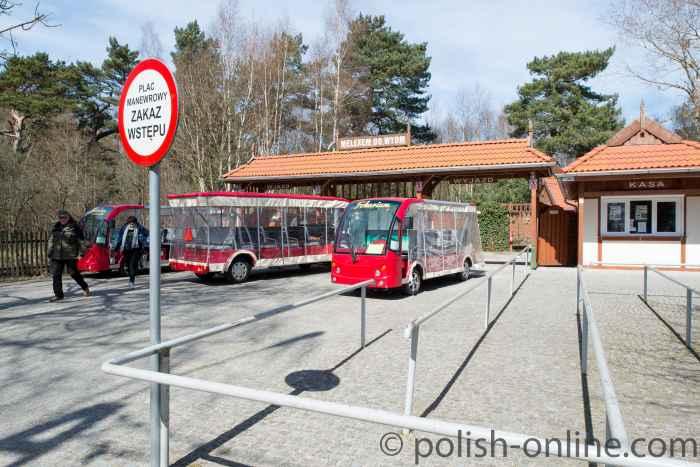 Elektobusse am Eingang des Slowinzischen Nationalparks bei Łeba