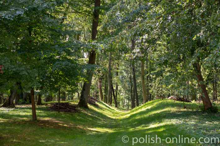 Schlosspark in Eichmedien (Nakomiady)