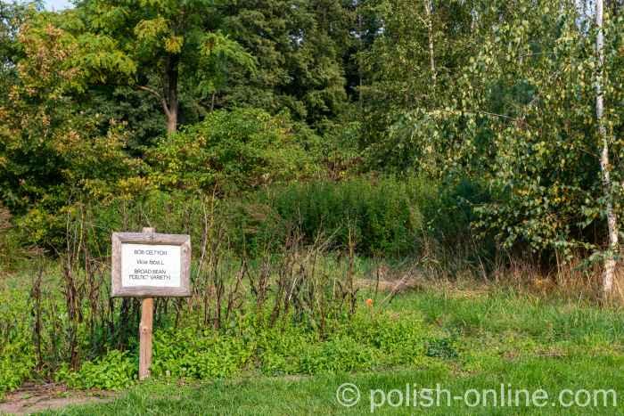 Kleines Feld mit alten Sorten im Freilichtmuseum Biskupin in Polen