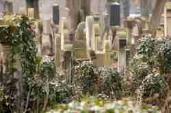 Grabsteine auf dem Neuen jüdischen Friedhof in Krakau