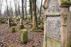 Jüdischer Grabstein mit Krone Krakau (Kraków)