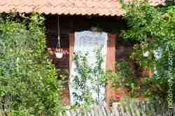 Gardine als Insektenschutz in Liebenberg (Klon)
