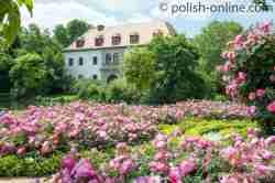 Altes Schloss im Fürst-Pückler-Park Bad Muskau