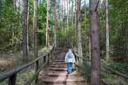 Wanderweg Aussichtspunkt Wzgórze Zielonka bei Lebbin (Lubin)