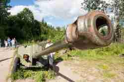 Artilleriegeschütz im Mauerwahld in Masuren