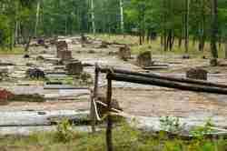 Reste von Baracken im Stalag Luft III in Sagan (Żagań)