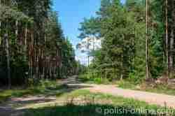 Unbefestigte Straße nach Klein Piwnitz in Masuren