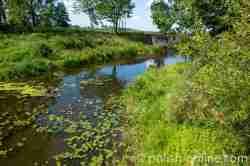 Fluss Angerapp bei Groß Medunischken (Mieduniszki Wielkie)