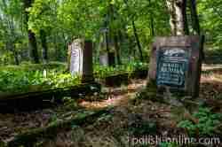 Grabsteine auf dem evangelischen Friedhof in Jakobsdorf (Jakubowo)