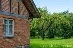 Haus aus Ziegelsteinen und alte Bäume in Angerburg (Węgorzewo) in Masuren