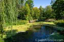 Teich im Schlosspark von Gallingen (Galiny)