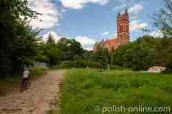 Die Pfarrkirche St. Peter und Paul in Mehlsack (Pieniężno)