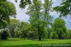 Schlosspark in Saybusch (Żywiec)