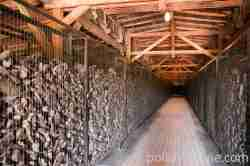 Schuhe von KZ-Opfern KZ Majdanek Lublin