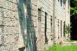 Ruinen und Unkraut