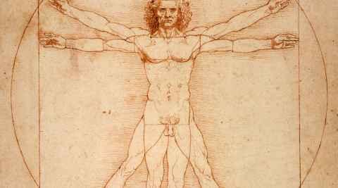 Der vitruvianische Mensch, Proportionsstudie nach Vitruv von Leonardo da Vinci (1492)