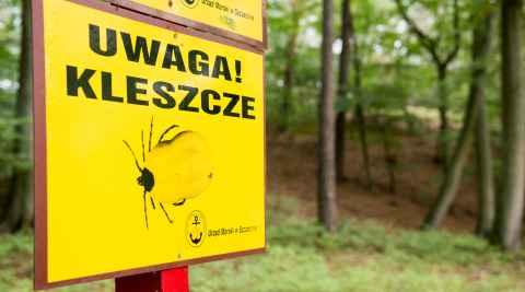 Warnschild vor Zecken auf der Insel Wollin